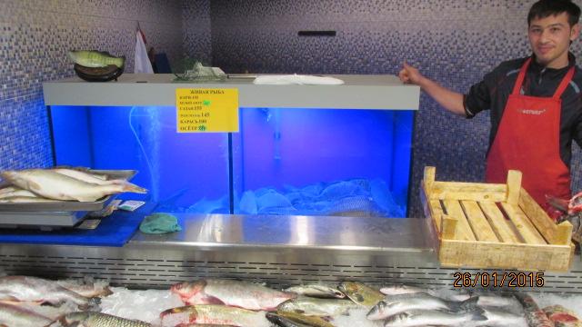 Аквариум для торговли живой рыбой и раками