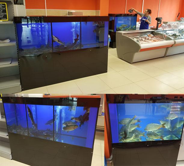 Два торговых аквариума установлены специалистами компании 'Аквадизайнер' в рыбном магазине.