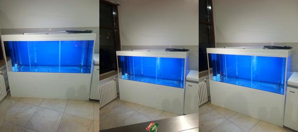 Трех секционный аквариум для торговли живой рыбой